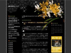 20100504_1340624